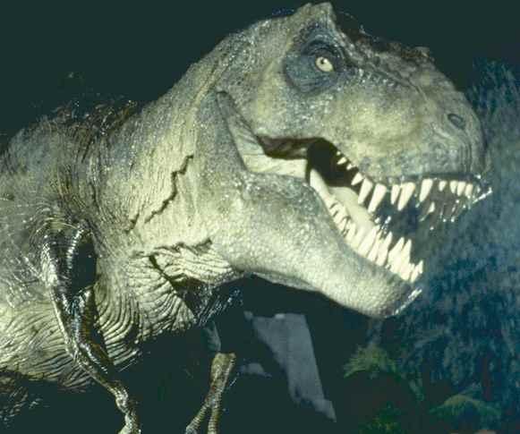 Tyrannosaurus-Rex-tiranosaurio-trex-dientes