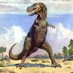Animales extintos: Tyrannosaurus Rex (hace 65 millones de años)