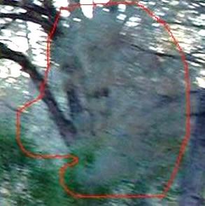 fotografias-espiritus-fantasmas-foto