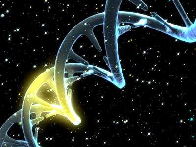 gen genes cromosomas adn