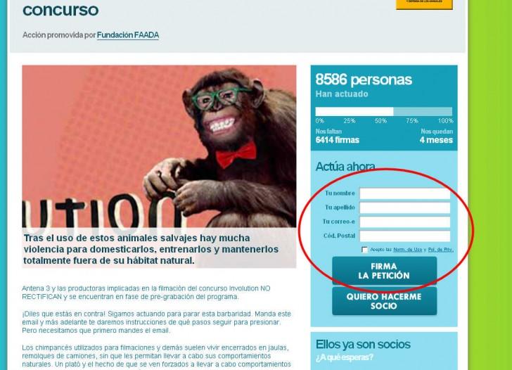 chimpance television denuncia involucion