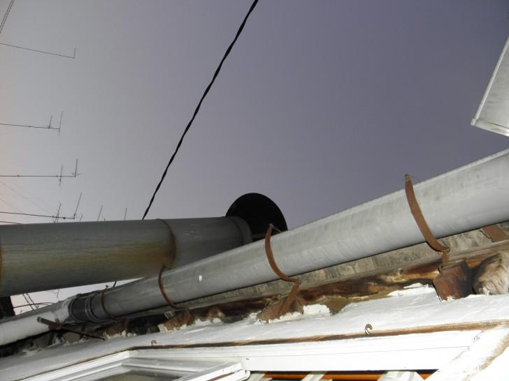 golondrinas nido alero tejado