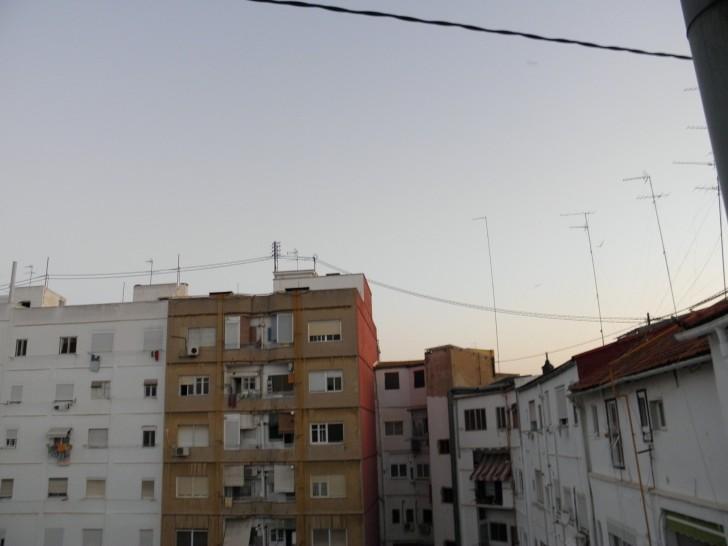 golondrinas volando patio vecinal