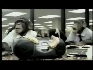 abuso television publicidad animales chimpances monos