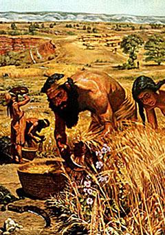 aparicion agricultura neolitico
