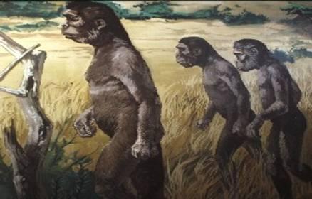 hominizacion pueblos nomadas prehistoria
