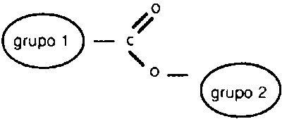 ester molecula oxigeno carbono