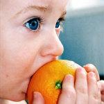 ¿Cómo podemos educar el sentido del gusto?
