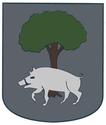 bolado apellido escudo armas