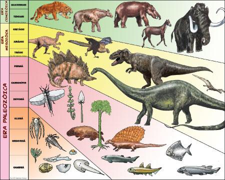dinosaurios paleozoica mesozoica cenozoica