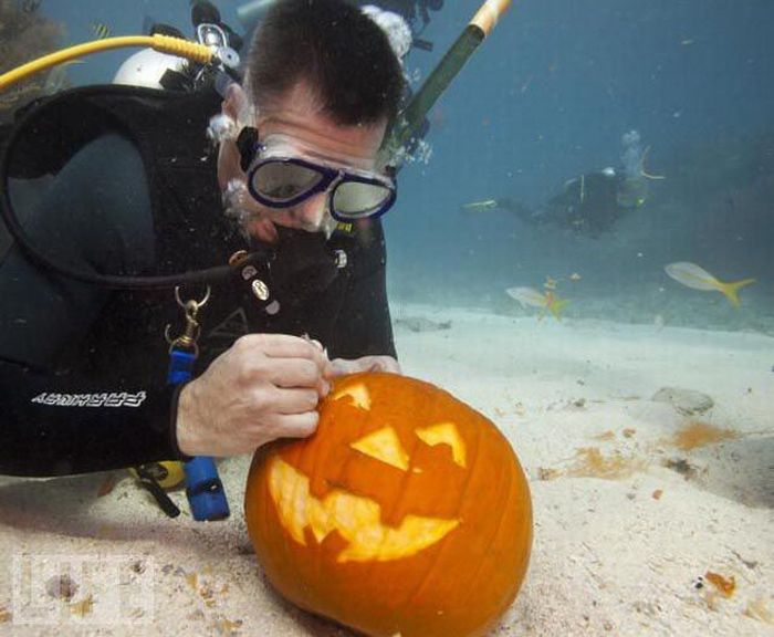 halloween evolucion anos antes despues 20