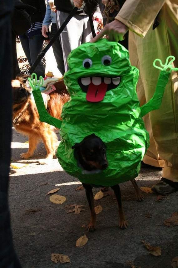 halloween perros disfraces disfraz traje 08