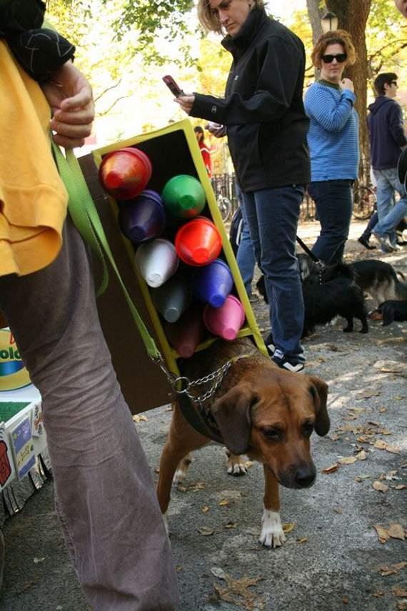 halloween perros disfraces disfraz traje 20