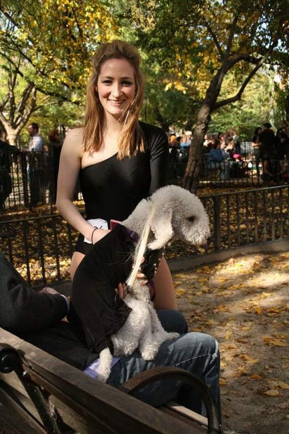 halloween perros disfraces disfraz traje 26