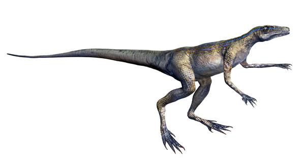 lagosuchus dinosaurio dinosaur