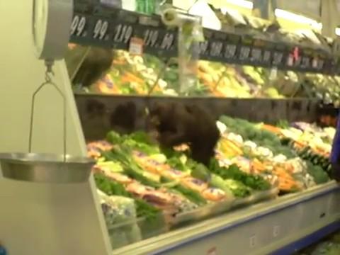 osezno oso cria supermercado verduras