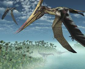pterosaur pterosaurio volador dinosaurio