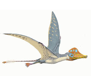 pterosaurio arcosaurio volador
