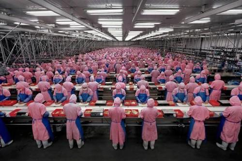 fabricas china trabajadores chinos 05