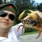 La venganza del cangrejo