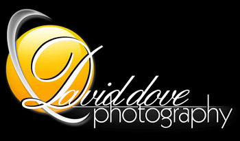 logo error fail diseno david dove fotografia