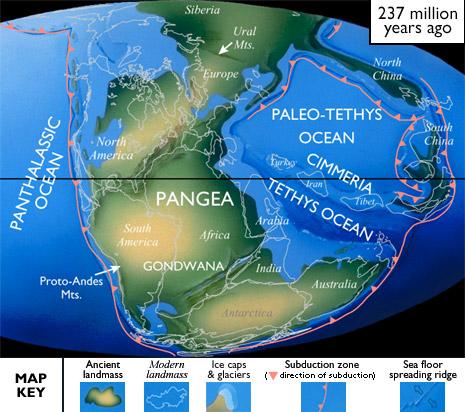 pangea gondwana tetis placas