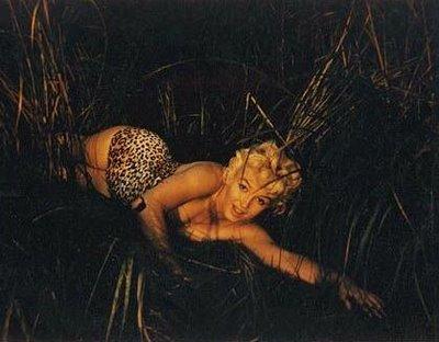 Marilyn Monroe Eve Arnold mujer leopardo