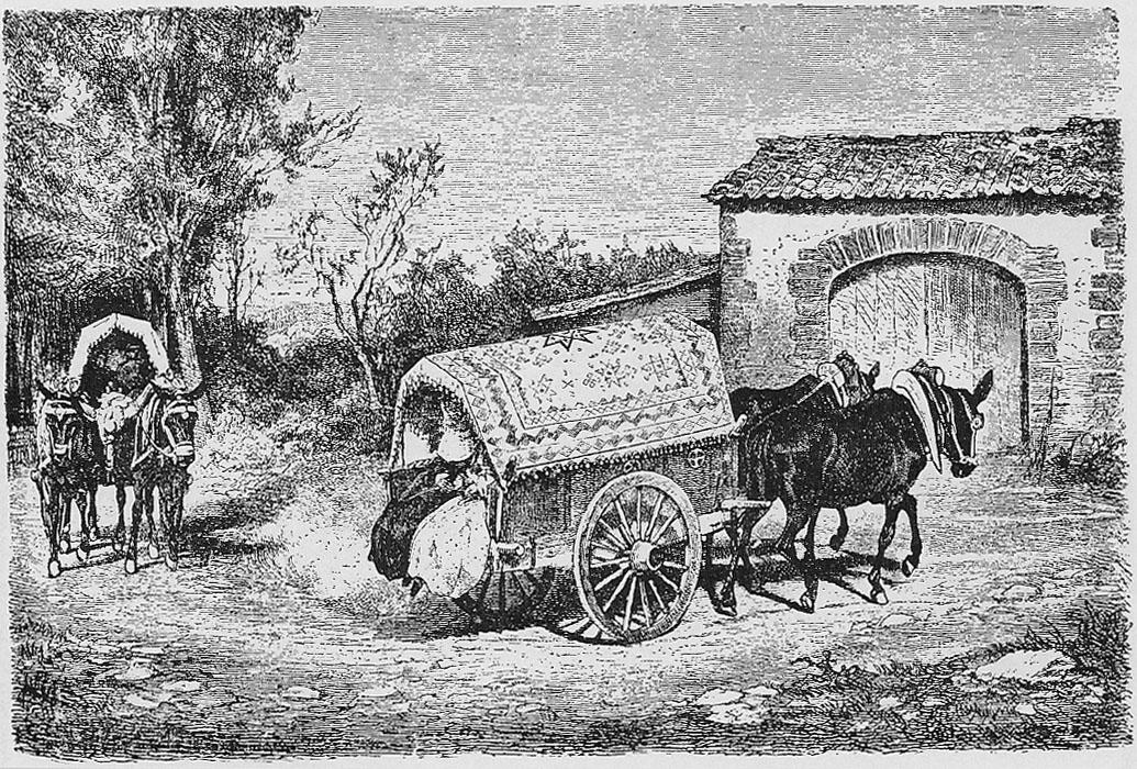 carro caballos campo