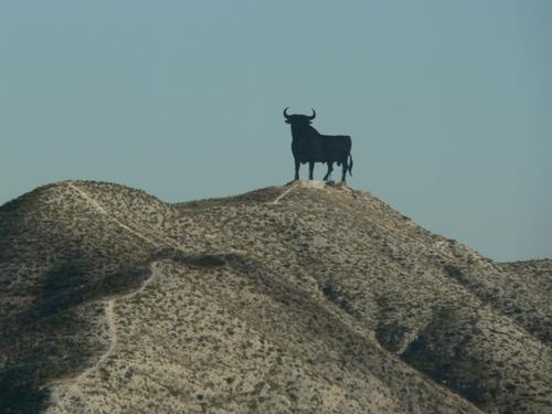 toro osborne cerro