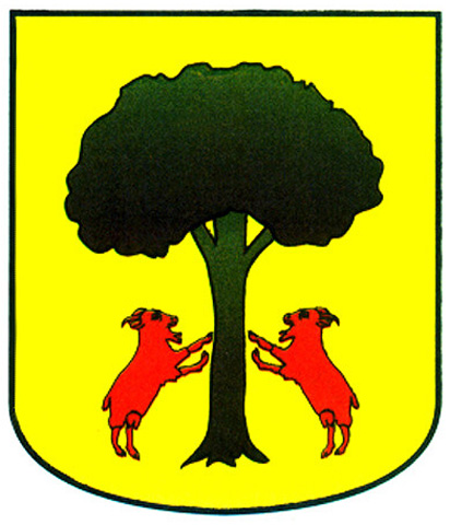 cabral apellido escudo armas