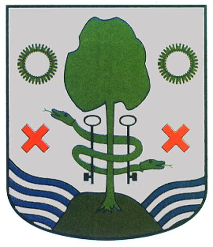 campomanes apellido escudo armas