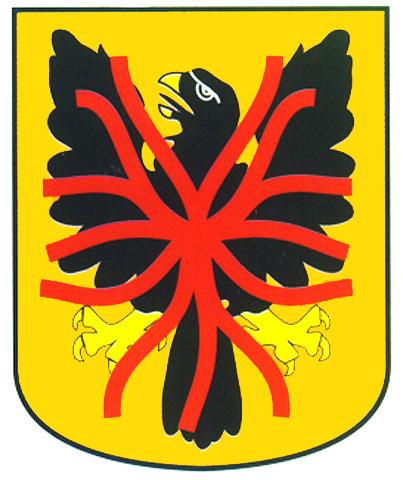 correa apellido escudo armas