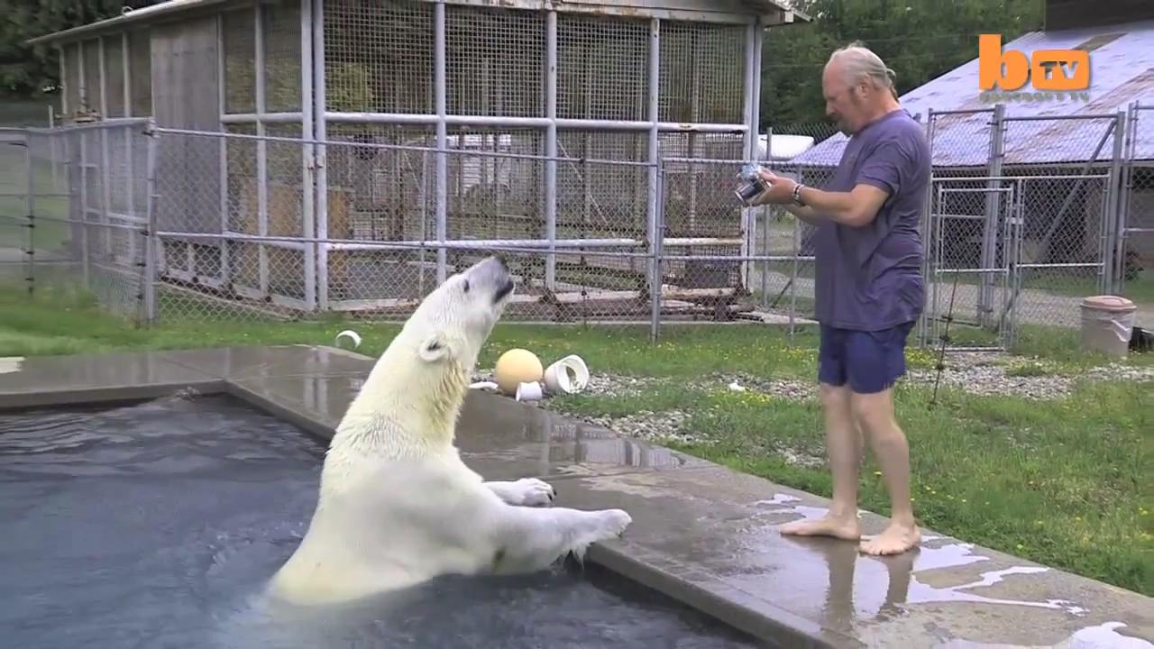 Mark Dumas Agee oso polar hombre 5