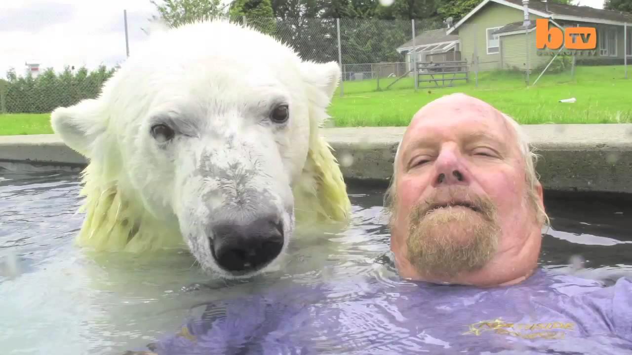 oso polar jugando hombre 4