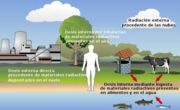 radiactividad radiacion ser humano