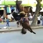 Un caballo tira a su jinete cayendo de espaldas