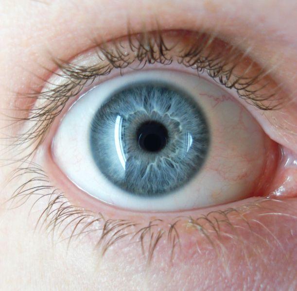 ojos-azules-blue-eye