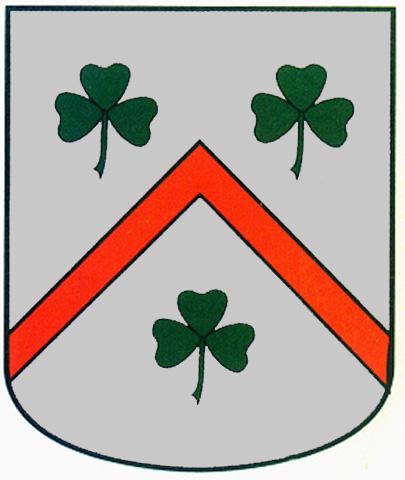 escudo apellido del campo