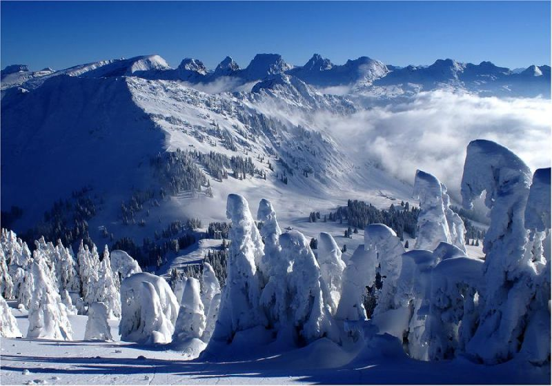 naturaleza bella paisaje nevado
