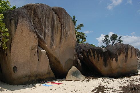 naturaleza bella playa