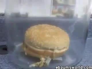 experimento hamburguesa mcdonalds
