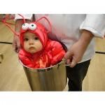 Los mejores trajes de Halloween para bebés