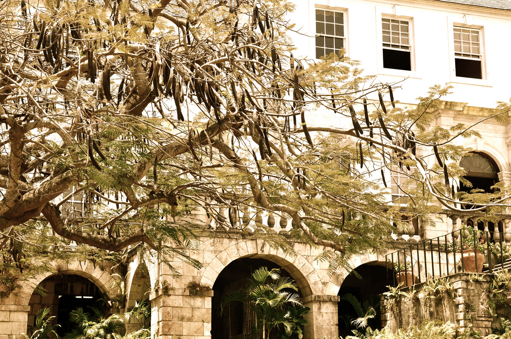 white witch rose hall jamaica 15