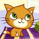 Juegos variados con el gatito travieso