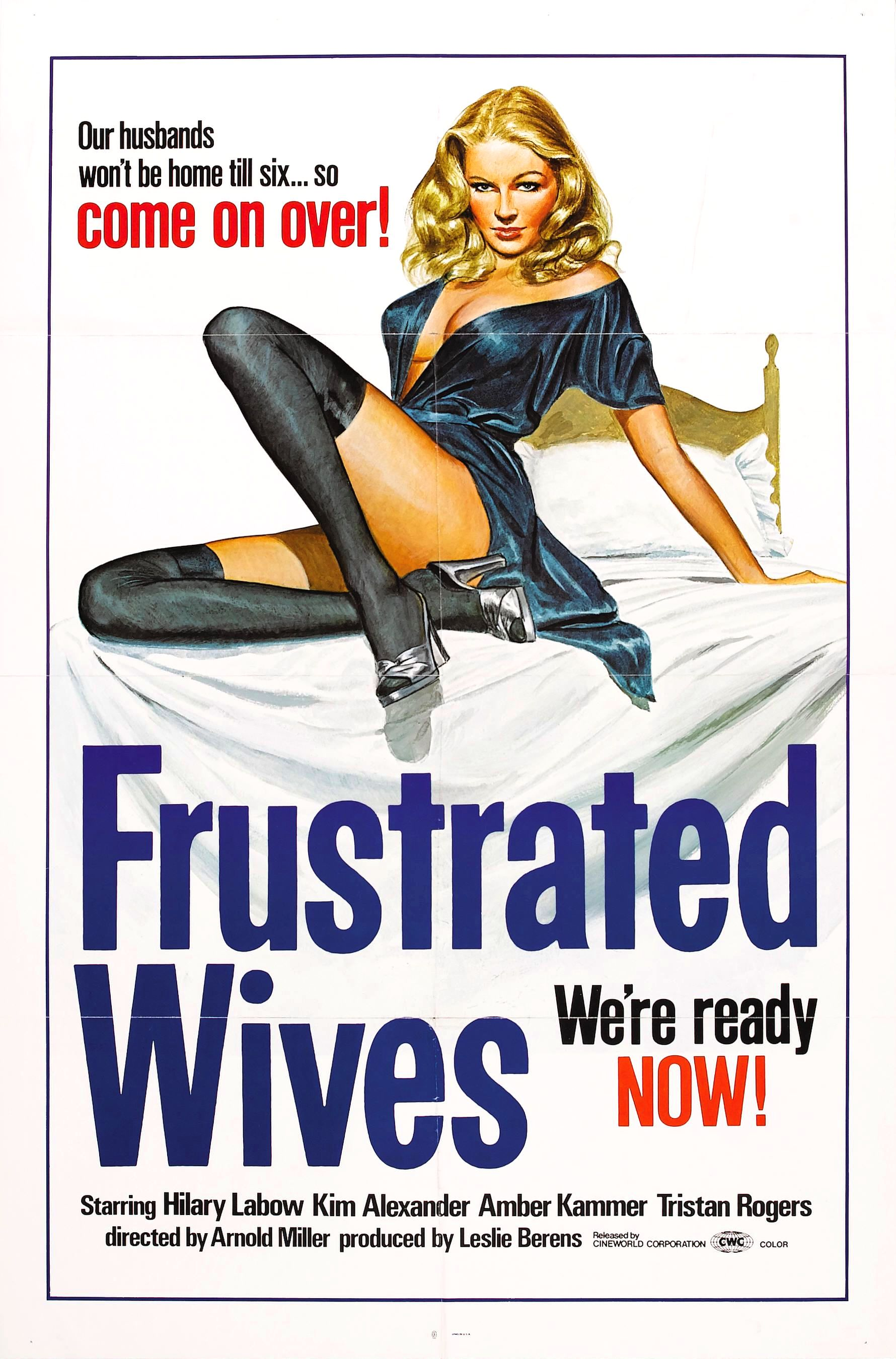 frustrated wives poster
