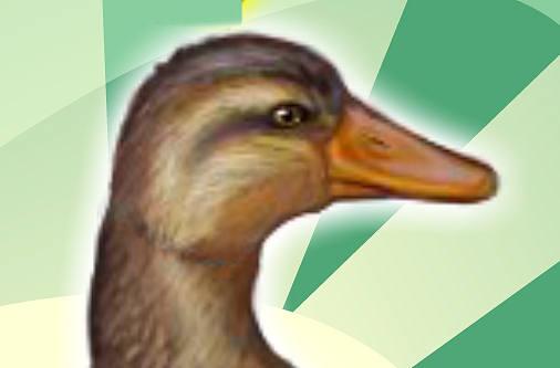 juego-cuidar-don-pato