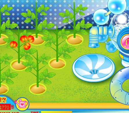 plantar hacer jugos tomate