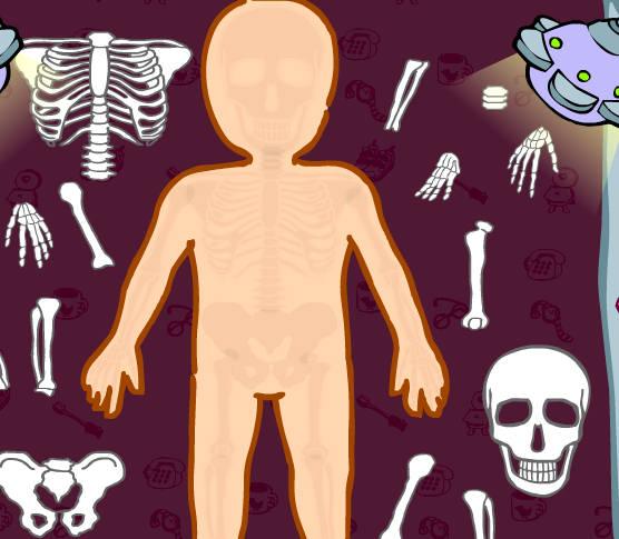 enfermera-anatomia