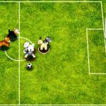 Fútbol de perros