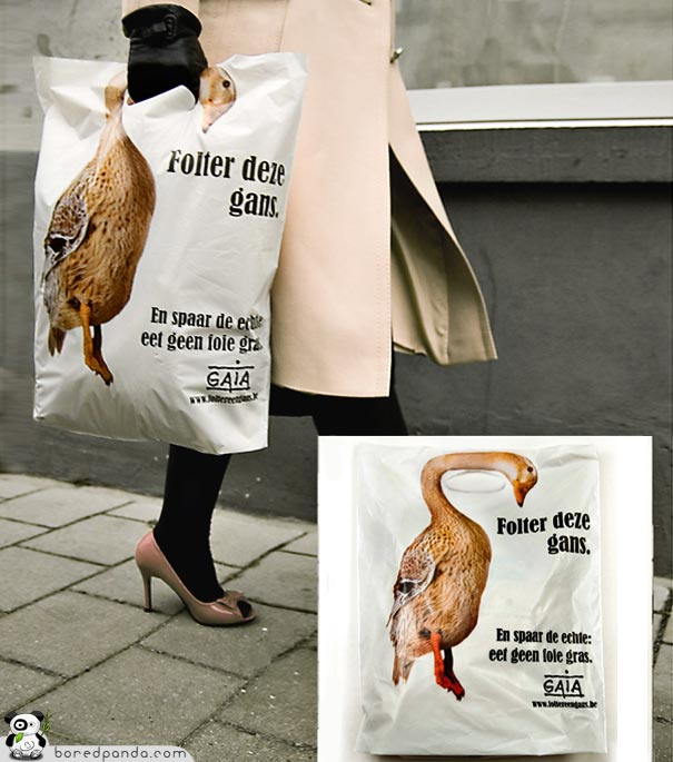 gaia Global Action in the Interest of Animal belgica